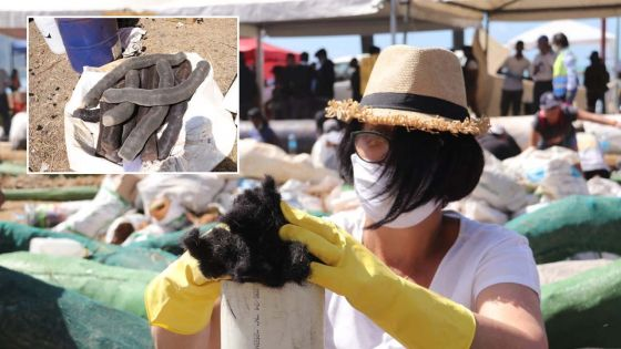Utilisation des cheveux pour contenir le fioul du Wakashio : L'ONG Hair Boom Mauritius attend une décision du PMO