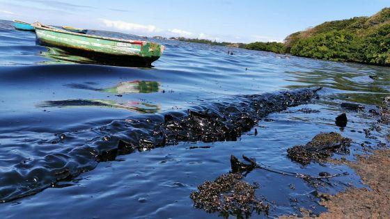 Post marée-noire : l'efficacité et la rapidité de la Santé mises en cause par «The Lancet»