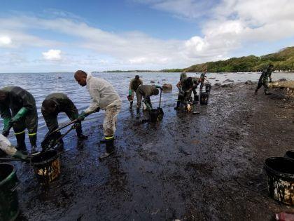 Hugo Clément et Greta Thunberg lèvent Rs 4,45 millions pour lutter contre la marée noire