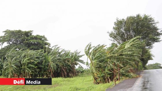 Météo : des rafales de 60 km/h attendues ; un autre anticyclone prévu le week-end prochain