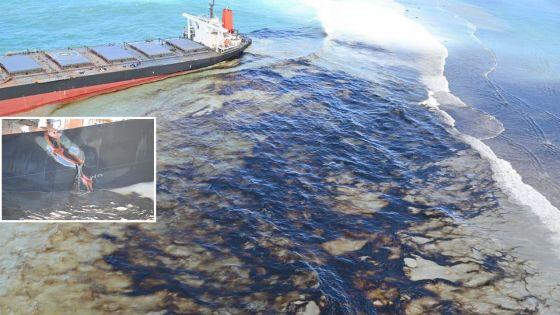 [En images] Wakashio : une catastrophe écologique se profile à l'horizon