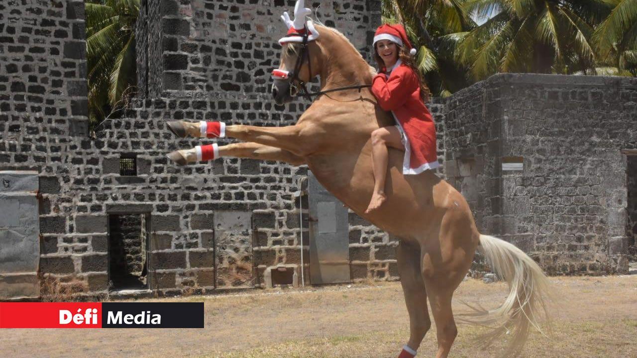 Noémie Barragan joue à Mère Noël avec Vinci, cheval du Maroc.