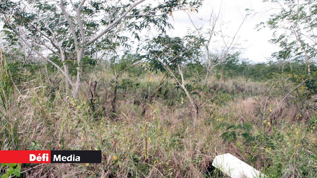 Terres agricoles abandonnées